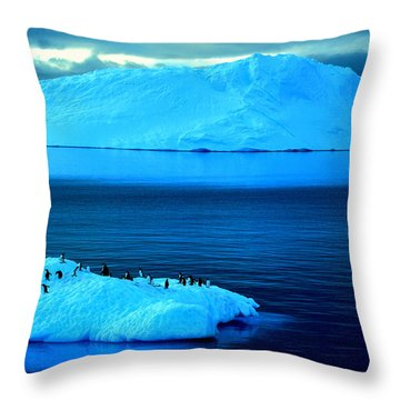 Penguins On Iceberg Throw Pillow by Amanda Stadther