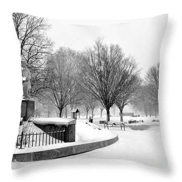 Penn Treaty Park Entrance Throw Pillow