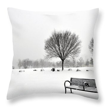 Penn Treaty Park Bench Throw Pillow
