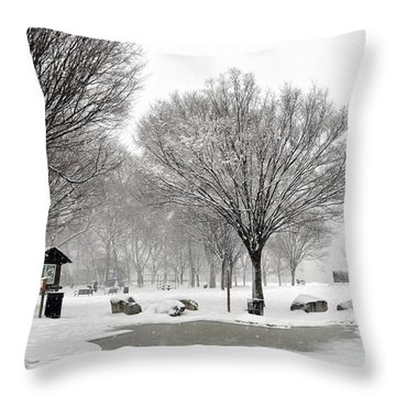 Penn Treaty Park Bulletin Board Throw Pillow