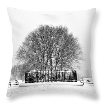 Penn Treaty Park Circle Throw Pillow