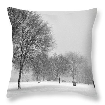 Penn Treaty Park Goers Throw Pillow