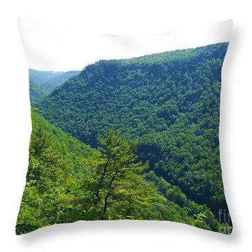 Pennsylvania Grand Canyon 1 Throw Pillow