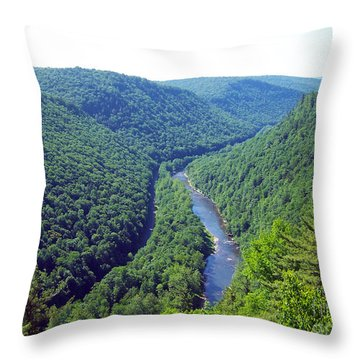Pennsylvania Grand Canyon 2 Throw Pillow