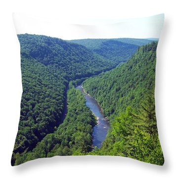 Pennsylvania Grand Canyon 3 Throw Pillow