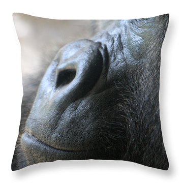 Penny For Your Thoughts Throw Pillow by David Nicholls