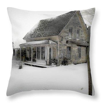 Pennywise Grate Throw Pillow by Brenda Giasson