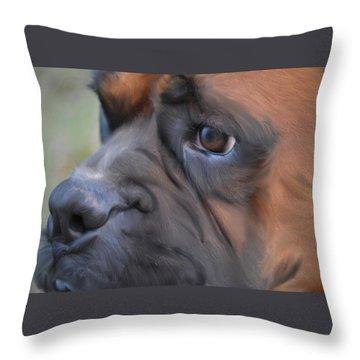 Pensive Boxer Throw Pillow by Linda Koelbel