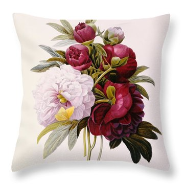 Peonies Engraved By Prevost Throw Pillow by Pierre Joseph Redoute