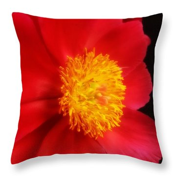 Peony 2 Throw Pillow by Heather L Wright