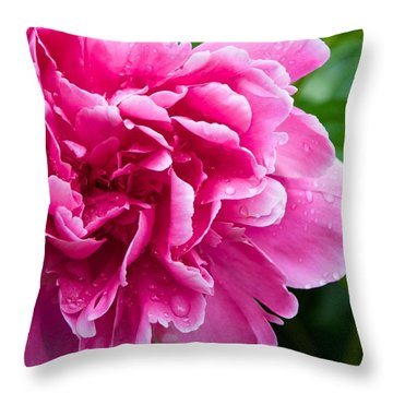 Peony After The Rain Throw Pillow