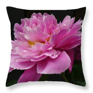 Peony Blossoms Throw Pillow by Lingfai Leung