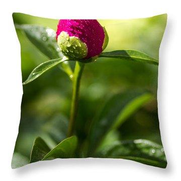 Peony Buds Throw Pillow