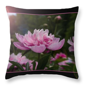 Peony Garden Sun Flare Throw Pillow by Patti Deters