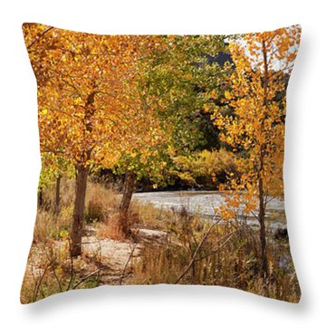 People Fishing In The Rio Grande River Throw Pillow