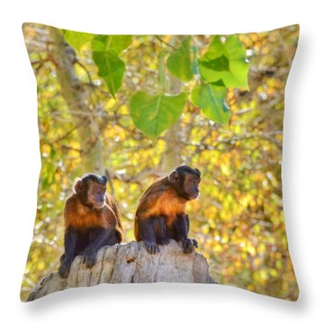 Throw Pillow featuring the photograph People Watching by Diane Alexander