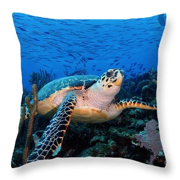Pepe On Eldorado Throw Pillow