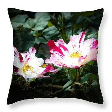 Peppermint Roses Throw Pillow