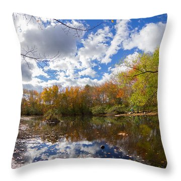 Pequotsepos Duck Pond Reflection   Throw Pillow