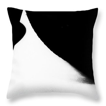 Percentage  Throw Pillow by Fei Alexander