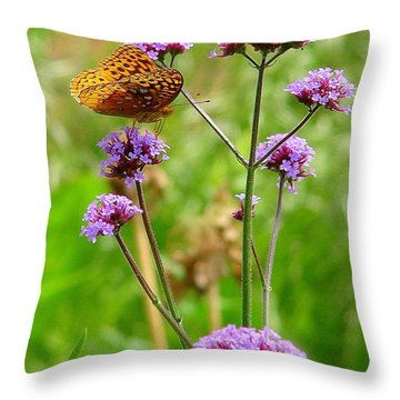Perched Throw Pillow by Rodney Lee Williams