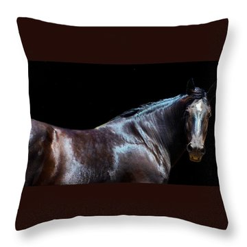 Percheron Mare 2 Throw Pillow by Cheryl Poland