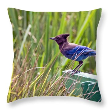 Perching Jay Throw Pillow