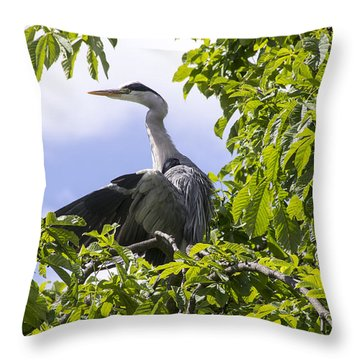 Throw Pillow featuring the photograph Perching Heron by Ross G Strachan