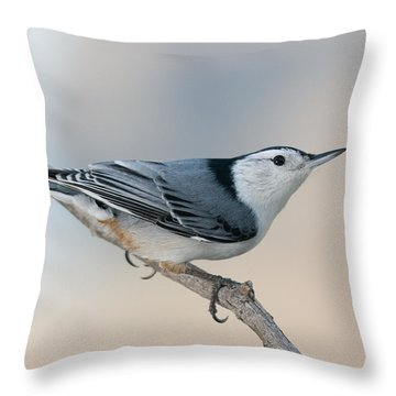 Perching Nuthatch Throw Pillow