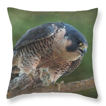 Peregrine Falcon Throw Pillow by Angie Vogel