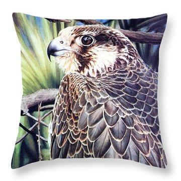 Da138 Peregrine Falcon By Daniel Adams Throw Pillow
