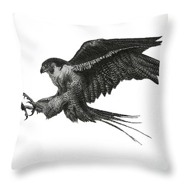 Peregrine Hawk Or Falcon Black And White With Pen And Ink Drawing Throw Pillow by Mario Perez