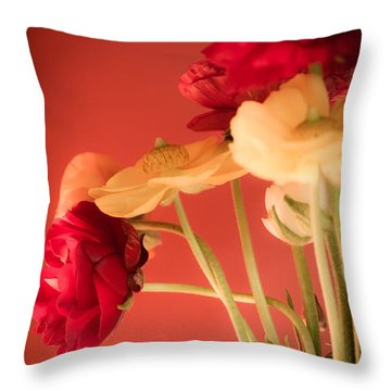 Perfctly Poised Throw Pillow