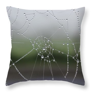 Perfect Circles Throw Pillow