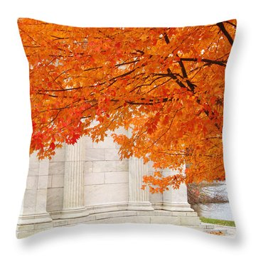 Perfect Contrast  Throw Pillow