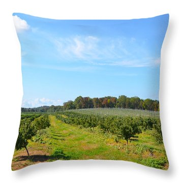 Perfect Fall Day On Alstede Farm Throw Pillow by Maureen E Ritter