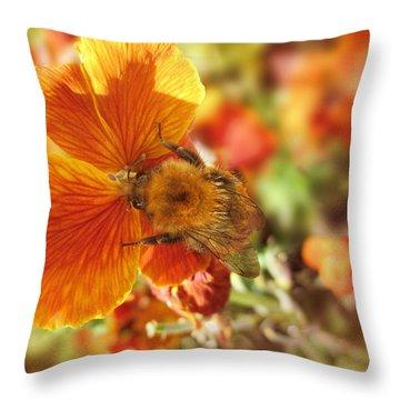 Perfect Harmony Throw Pillow