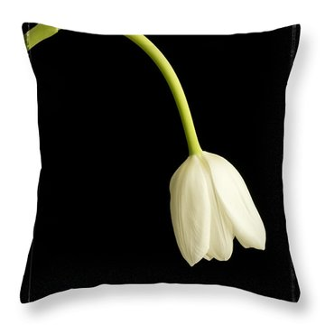 Perfect Love Throw Pillow by Edward Fielding