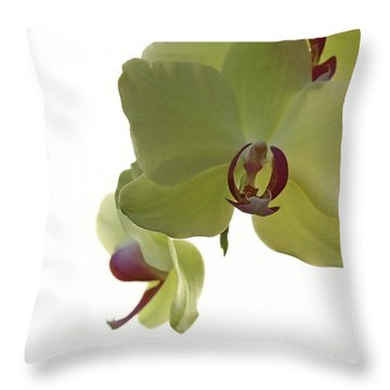 Perfect Moments Orchid  Throw Pillow by Inspired Nature Photography Fine Art Photography