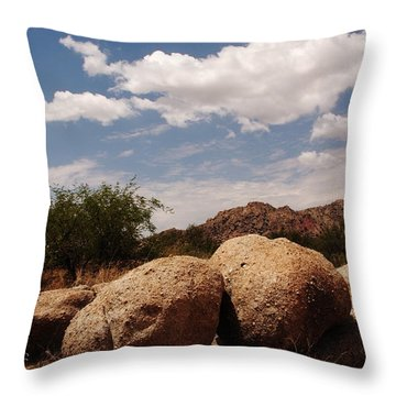 Perfect Pairing Throw Pillow by Michael McGowan
