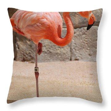 Perfect Pink Flamingo Throw Pillow by DejaVu Designs