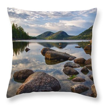 Perfect Pond Throw Pillow