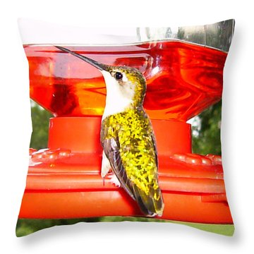 Throw Pillow featuring the photograph Perfect Pose by Nick Kirby