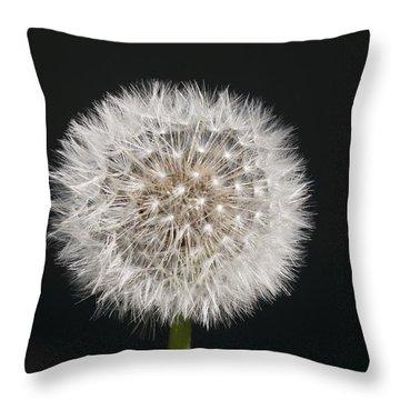 Perfect Puffball Throw Pillow by Richard Thomas