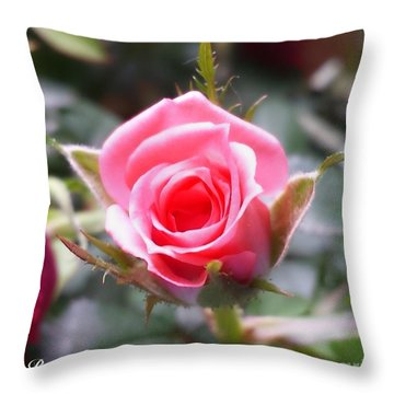 Perfect Rosebud In True Color Throw Pillow