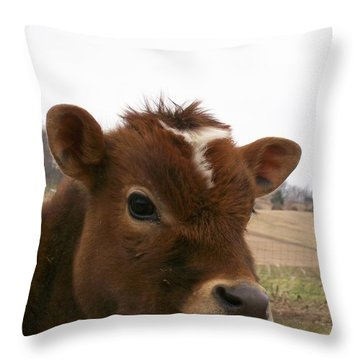 Throw Pillow featuring the photograph Perfect Stance by Sara  Raber