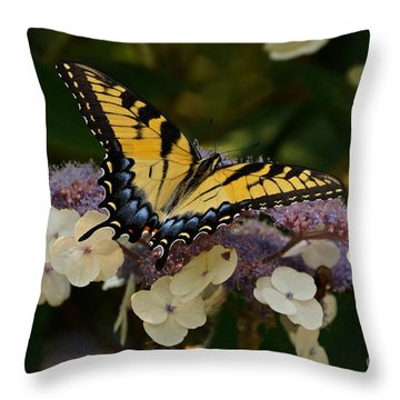 Perfect Tiger Swallowtail Butterfly Throw Pillow by Byron Varvarigos