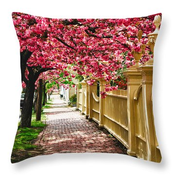 Perfect Time For A Spring Walk Throw Pillow