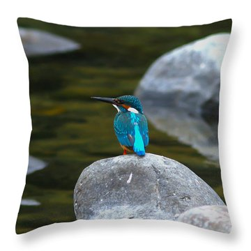 Perfect View Throw Pillow by Ramabhadran Thirupattur