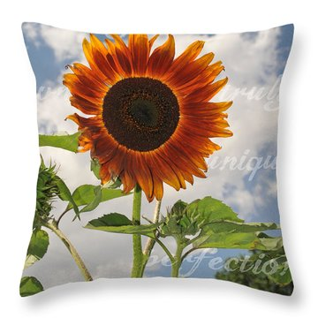 Perfection In The Eye Of The Beholder Throw Pillow